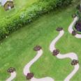 Naumkeag: Bird's Eye View of Rose Garden