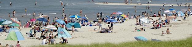 Crane Beach: umbrellas and people on beach